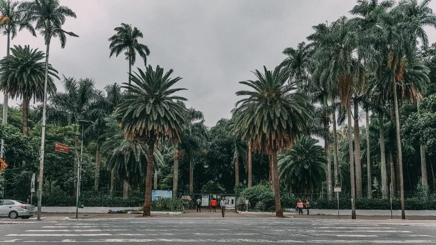 Tradicional ponto de prostituição de São Paulo, Parque da Luz está fechado por causa da quarentena - Talyta Vespa