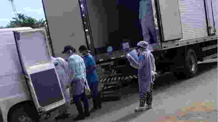 Rosa estava desistindo do enterrona terça, quando tiraram o caixão da dia do caminhão frigorífico - Arquivo pessoal - Arquivo pessoal