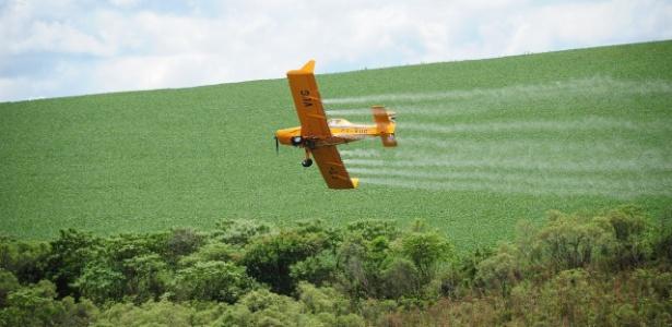Avião joga agrotóxico em plantação