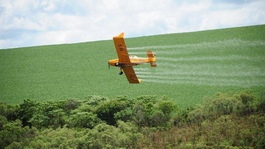Avião despeja agrotóxico em plantação - Repórter Brasil