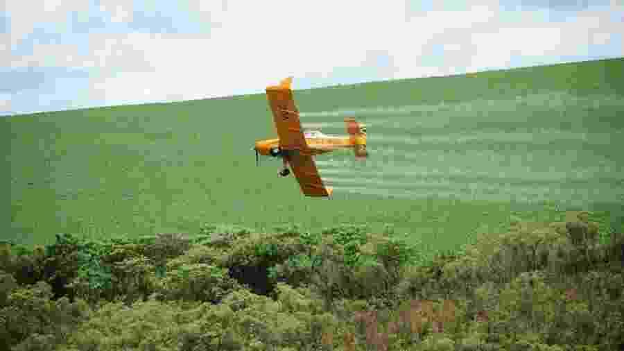 Avião joga agrotóxico em plantação - para material da Repórter Brasil - Repórter Brasil