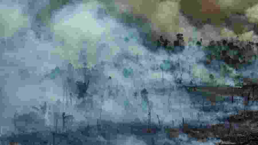Imagem aérea mostra queimada em Novo Progresso, no Pará - Victor Moriyama/Greenpeace