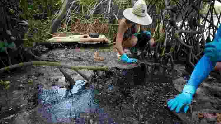 A fotógrafa Isabel Sant'Ana descreve cenário 'assustador' em manguezal - Pedro Accioly