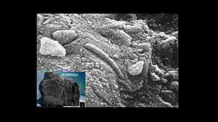 O meteorito ALH84001 vindo de Marte. Seriam essas pequenas estruturas fósseis de microorganismos? - Reprodução - Reprodução