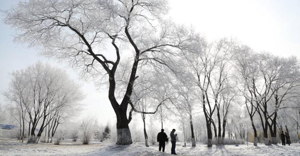 2.mar.2016 - Árvores ficam cobertas por gelo na cidade de Heihe, na China