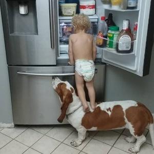 """Bebê tem ajuda de cachorro para """"assaltar"""" geladeira - Reprodução/Facebook"""