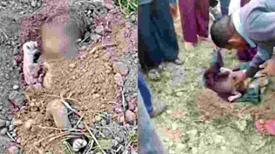 O recém-nascido foi resgatado após enterrado vivo em uma fazenda na cidade de Khatima, na Índia, na última quarta-feira - Reprodução