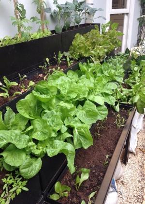 A mini-horta Garni é uma linha de jardinagem da empresa Mobko, fabricante de móveis para escritório