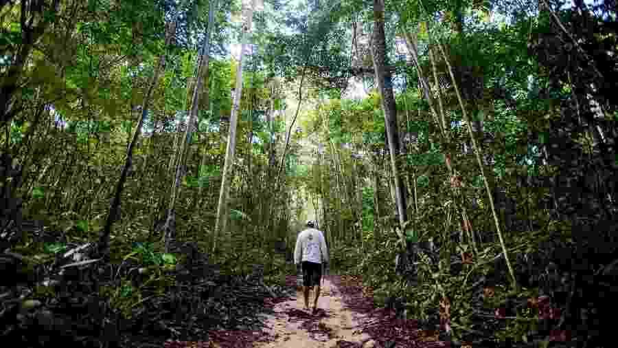 Mapeamento mostra 1.079 unidades de conservação ambiental a 10 km ou menos de pontos de mineração - Marcelo Camargo/Agência Brasil