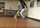 Reprodução/ YouTube/ Guinness World Records