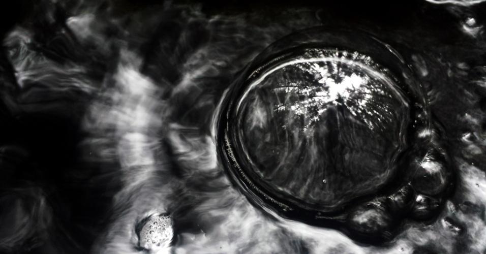 GALHOS NA ÁGUA - Imagem captura o reflexo da copa de uma árvore em bolha de água em Dundee, na Escócia