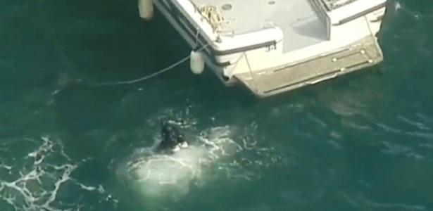 Mergulhador trabalha no resgate de corpos em baía próxima a Sydney