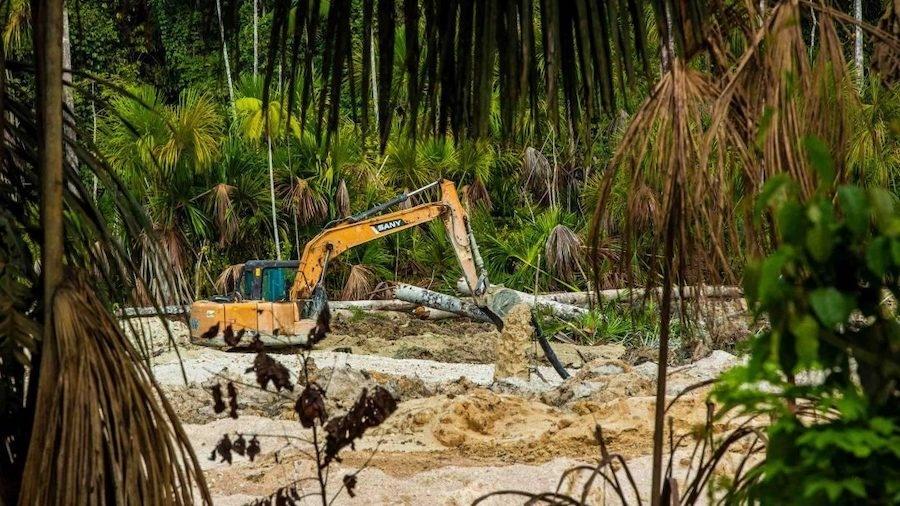 Apenas em 2020, uma área equivalente a 1.340 campos de futebol pertencentes a etnia Piripkura foi devastada pelo agronegócio e a mineração - Fernando Martinho/Repórter Brasil