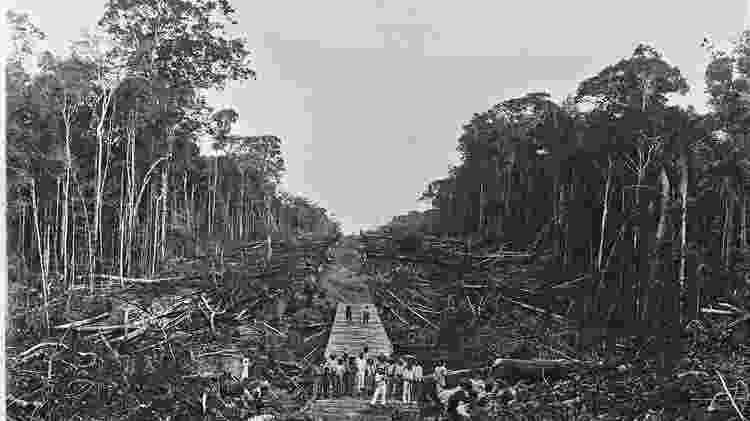 Rondon coordenou trabalho de linha telegráfica do Mato Grosso ao Amazonas - Divulgação