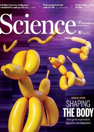 Science / Reprodução