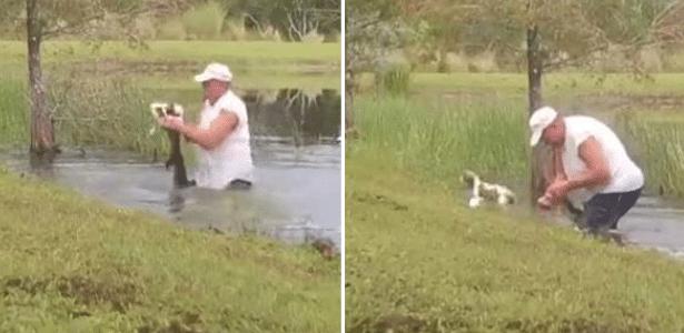 Tudo pelo amigo | Homem pula em lago e salva cachorro da boca de jacaré