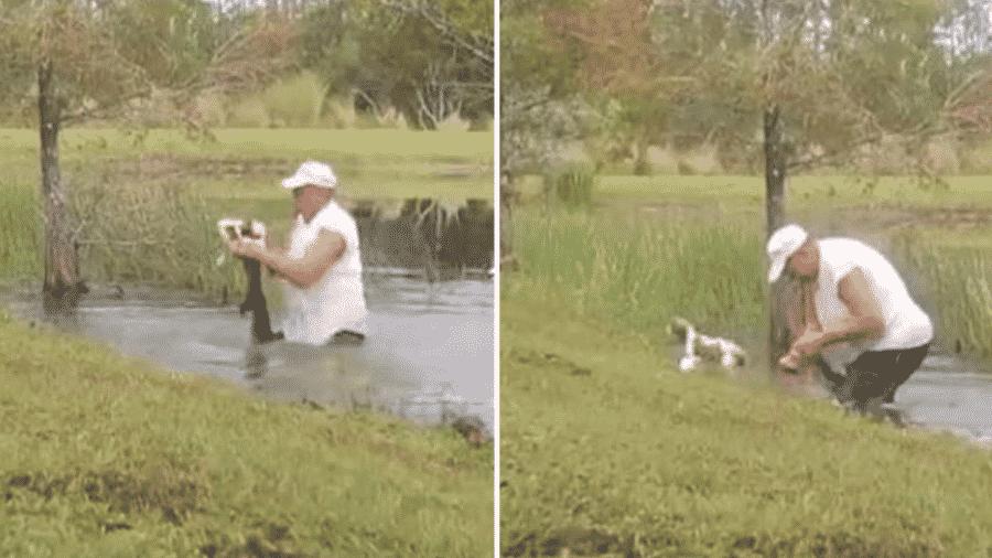 Homem salva cachorro da boca de jacará na Flórida (EUA) - Reprodução/Montagem