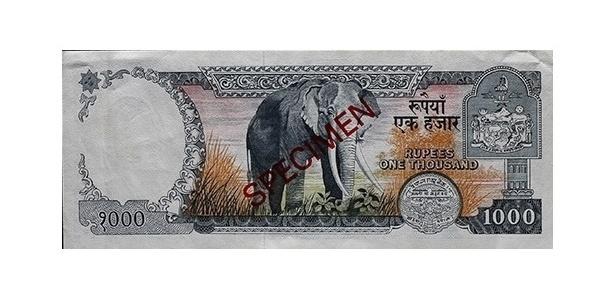 Nepal: A nota de 1.000 rúpias nepalesas, de 1981, tem um elefante asiático em um dos lados