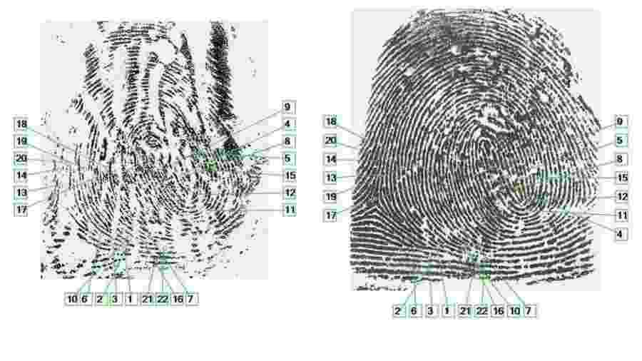 Perito precisou fazer uma dissecação da pele que recobre os dedos do indivíduo - Sindpep/Divulgação