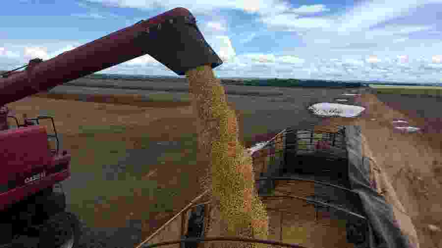 Caminhão é carregado com grãos de soja em Porto Nacional (TO) - Roberto Samora