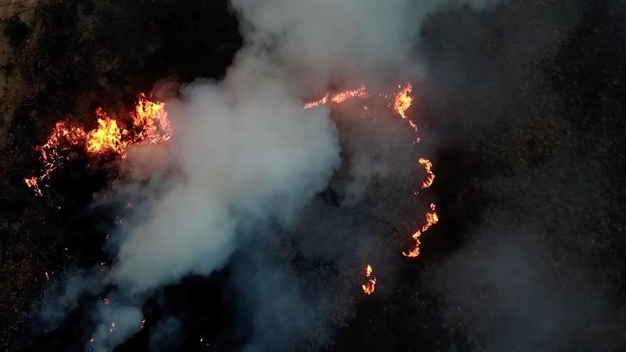 Estudos apontam que a área queimada em 2020 supera em dez vezes a área de vegetação natural perdida em 18 anos - Reprodução MOV