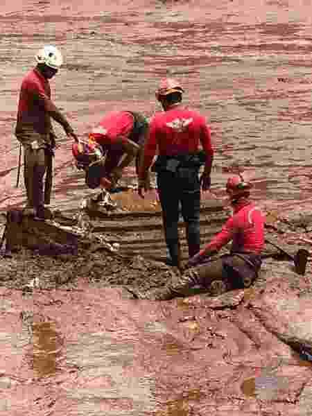 Bombeiros em busca por vítimas da tragédia em Brumadinho (MG) - Divulgação