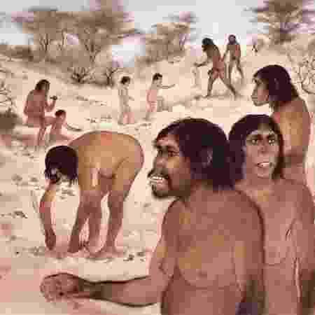 Hominídeos do passado se tornaram bípedes nas savanas, diz estudo - Science Photo Library