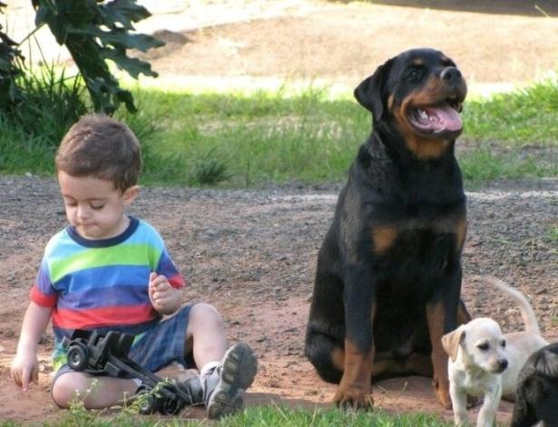Enzo, de 6 anos, sofreu convulsão que deixou o cachorro da família em alerta