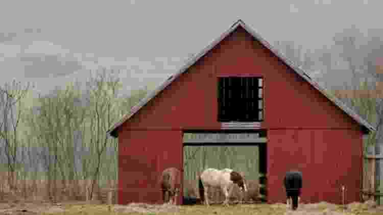 O setor de laticínios em Vermont está tentando atrair uma força de trabalho mais diversificada - Reuters/BBC