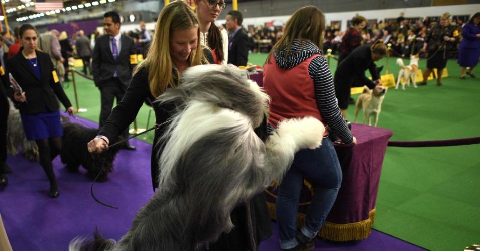 15.fev.2016 - Um cão da raça bearded collie pula durante competição de cães, sob olhares e sorrisos de sua dona. A edição de número 140 do show anual de cachorros do Westminster Kennel Club ocorre em Nova York (Estados Unidos) nesta semana