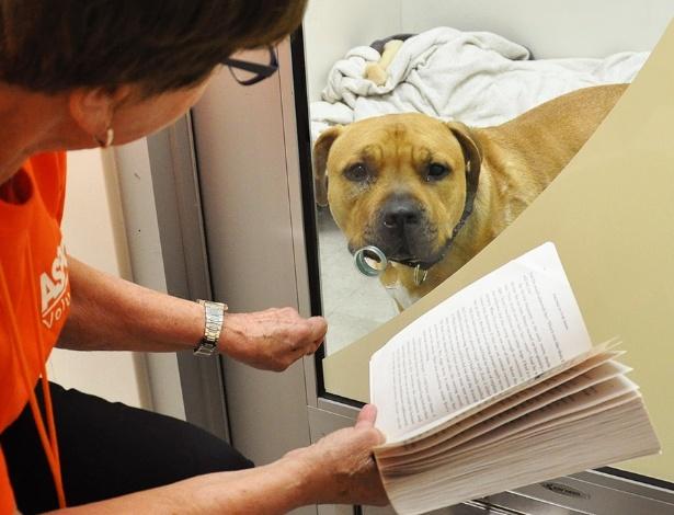 Hildy Benick lê para Margarita, alojada em um canil da Aspca, nos EUA