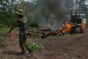 Cortes no Ibama explicam aumento de desmatamento na Amazônia, diz Noruega (Foto: Lalo de Almeida/The New York Times)