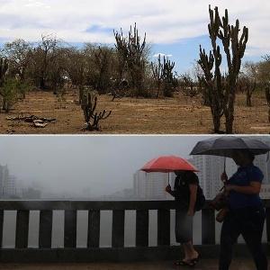 Diego Nigro/JC Imagem/Estadão Conteúdo/Edson Ruiz/Coofiav
