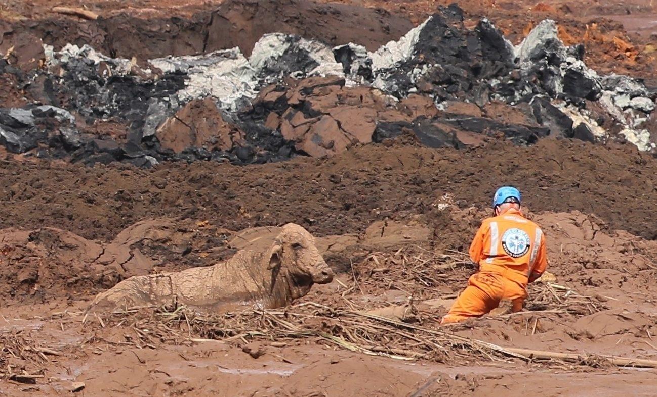 Minas Gerais tem um rompimento de barragem a cada 2 anos, diz estudo