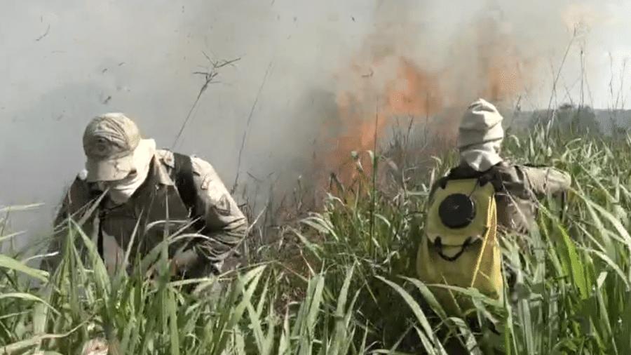 Encontro com Fátima Bernardes mostra bombeiros combatendo incêndios na Amazônia - Reprodução/Globoplay