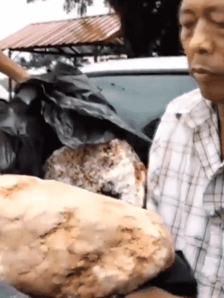 Pescador encontra vômito de baleia que vale milhões - Reprodução/Twitter