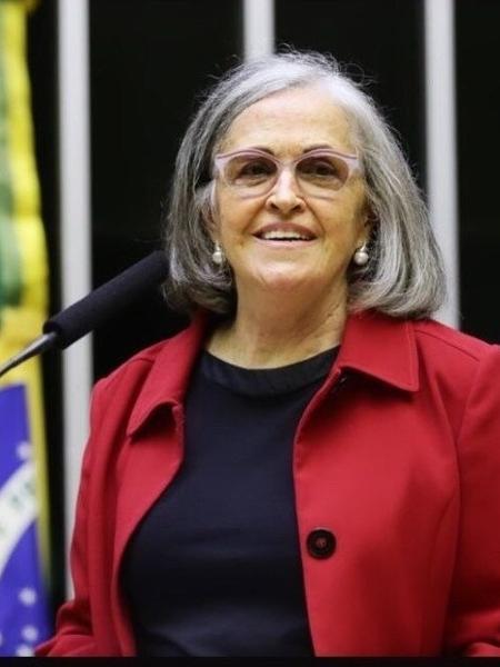 Anna Peliano, socióloga e mentora do Mapa da Fome - Michael Jesus/Câmara dos Deputados