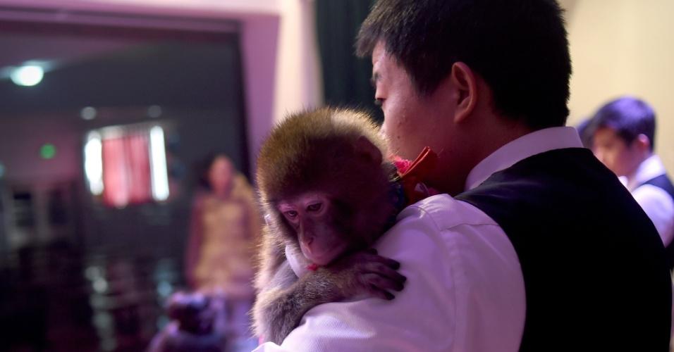 Treinador do zoológico de Dongying, província de Shandong, abraça macaco que se apresentará nas comemorações do Ano-Novo chinês
