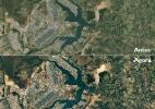 Google/Landsat