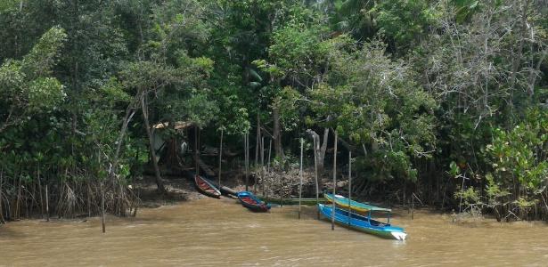 Comunidade ribeirinha no Pará, de onde a Natura extrai sementes para seus cosméticos