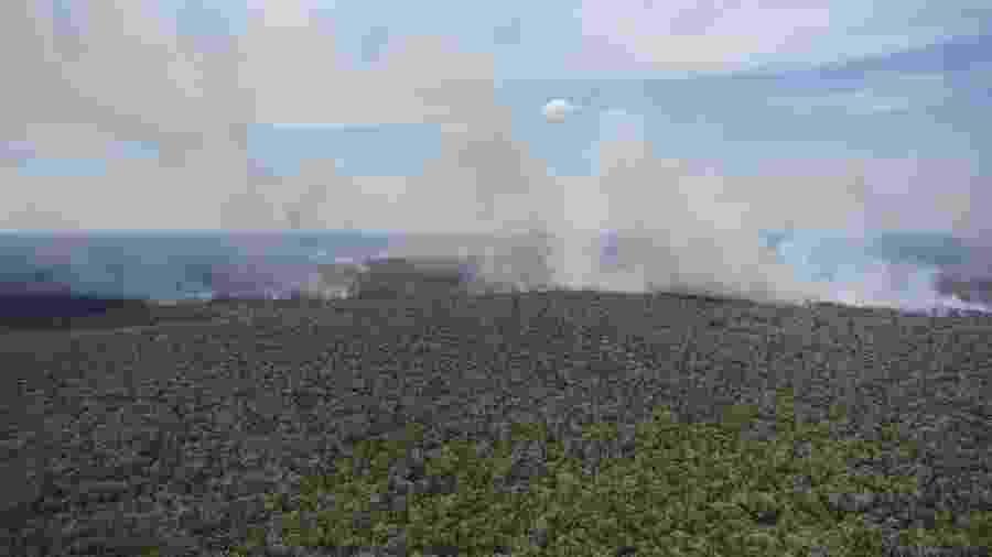 As queimadas na Amazônia brasileira provocaram debate internacional sobre a preservação da floresta - Felipe Werneck/Ibama