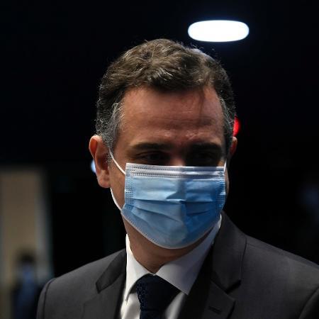 Arquivo - Presidente do Senado, Rodrigo Pacheco (foto), deve se reunir com o ministro da Saúde ainda hoje - Jefferson Rudy/Agência Senado