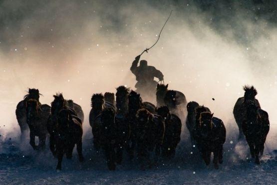 """1º.jul.2016 - Com uma foto de um cavaleiro da Mongólia, Anthony Lau, de Hong Kong, venceu o concurso Fotógrafo de Viagem do Ano da 'National Geographic' de 2016. """"A neve estava ficando mais pesada, o vento, mais forte e a luz, se afastando de sua melhor posição"""", diz ele. """"Sabia que só teria alguns cliques para tirar o melhor desse encontro. Com um pouco de sorte, em uma das últimas tentativas, registrei o momento em que um dos cavaleiros aparece em meio à névoa da manhã junto com seus cavalos"""""""