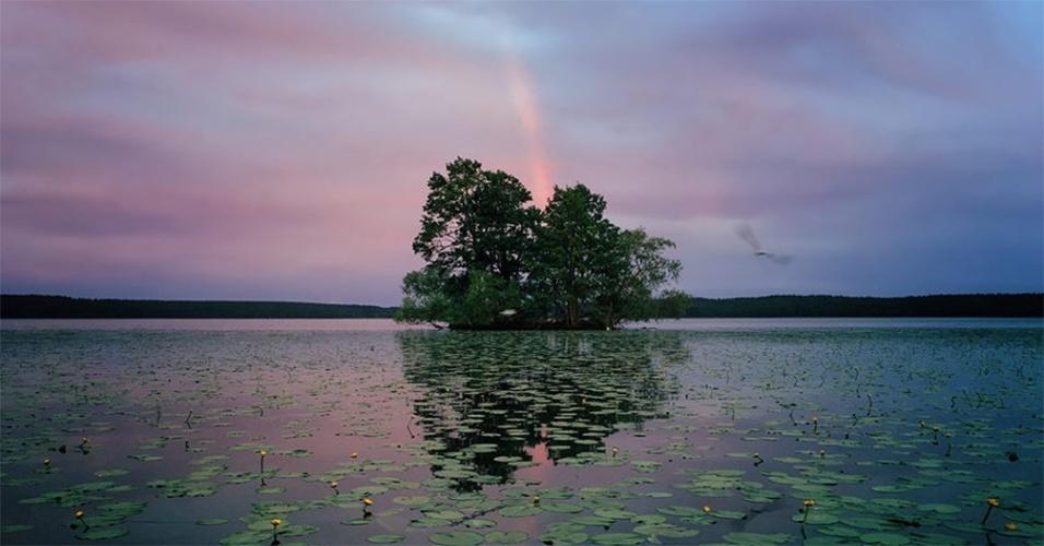 Foto tirada por Aaron Sandberg. A imagem levou o 1º lugar na categoria natureza