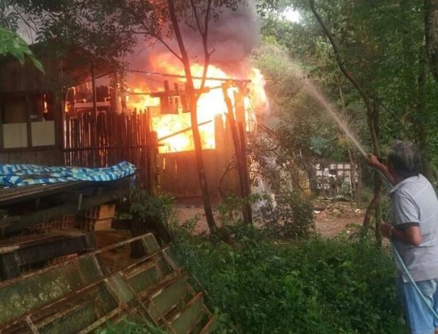 Casa, em que moravam a proprietária Carla Hirsch e 41 cachorros, foi destruída pelo fogo