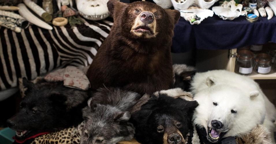 28.dez.2017 - Diversos objetos feitos com animais ameaçados de extinção foram apreendidos ao longo de anos pela polícia fronteiriça em Londres
