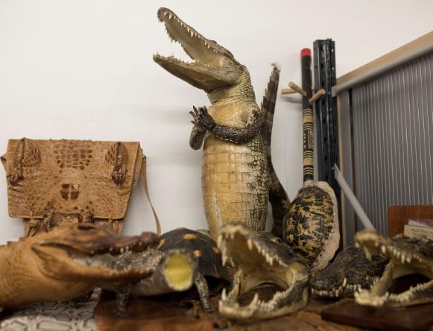 28.dez.2017 - Um crocodilo empalhado é visto ao lado de materiais feitos com pele de crocodilo em armazém da polícia de fronteira de Londres