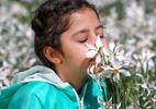 O que é o treinamento de olfato que combate um dos sintomas da covid-19 - Getty Images
