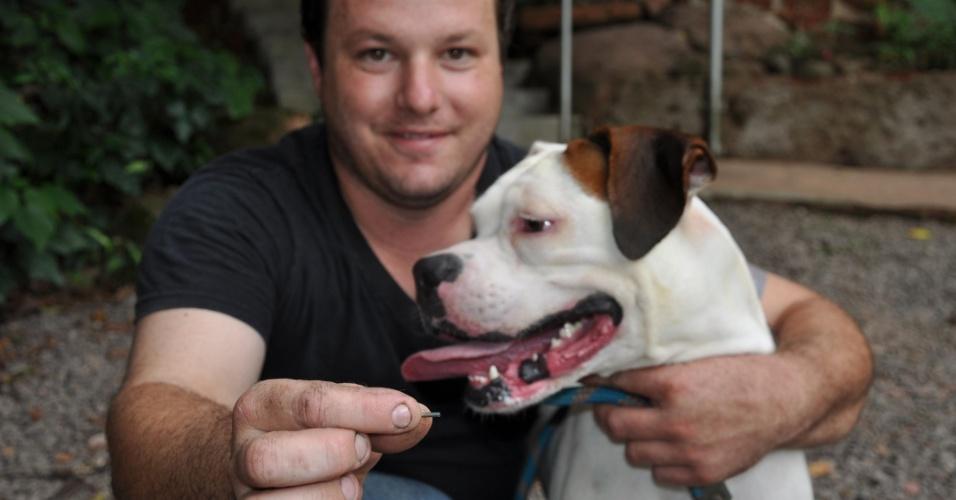 Cão recebe chip de identificação em Lajeado (RS)