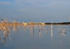 Maior seca dos últimos 100 anos provoca mudanças no uso da água no Ceará - Everardo Onofre/Ministério da Integração Nacional